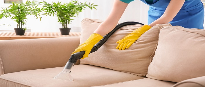 Professional Couch Cleaners